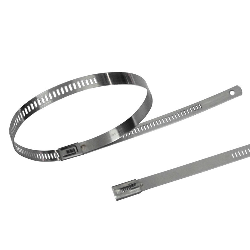 18eacbdbac76 China Self Locking Stainless Steel Ladder Cable Ties With Flat And Low  Profile Head supplier